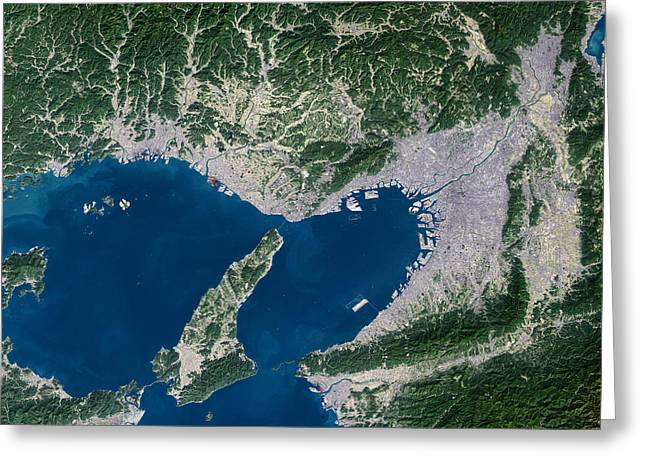 Osaka Greeting Cards - Osaka, Satellite Image Greeting Card by Planetobserver