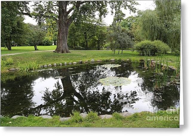 Oslo Park Greeting Card by Carol Groenen