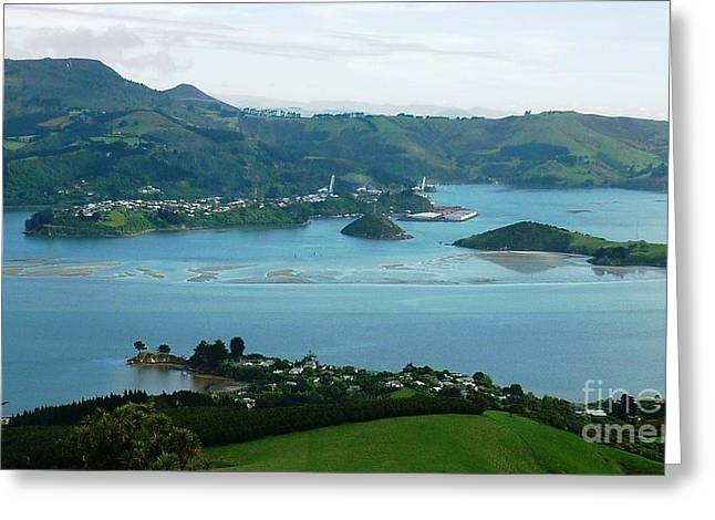 Otago Harbour Greeting Card by Therese Alcorn