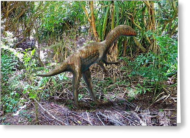 Dinosaurs Greeting Cards - Othiniela In The Forest Greeting Card by Frank Wilson