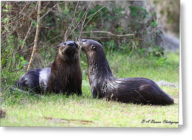 Polk County Florida Greeting Cards - Otter Buddies Greeting Card by Barbara Bowen