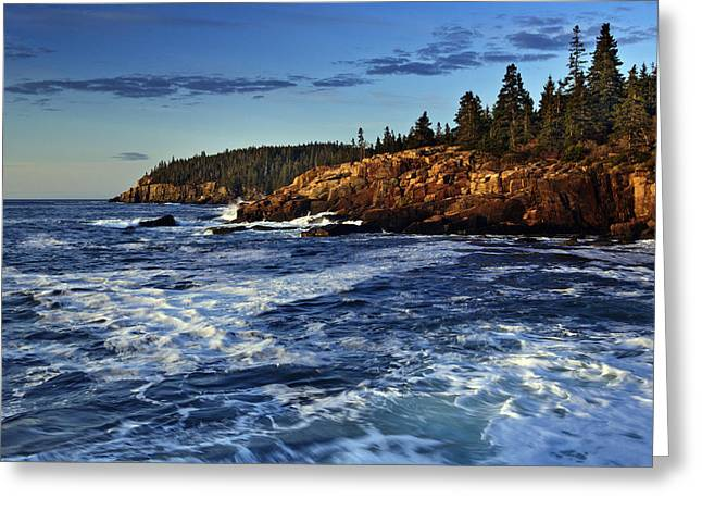 New England Ocean Greeting Cards - Otter Cliffs Greeting Card by Rick Berk