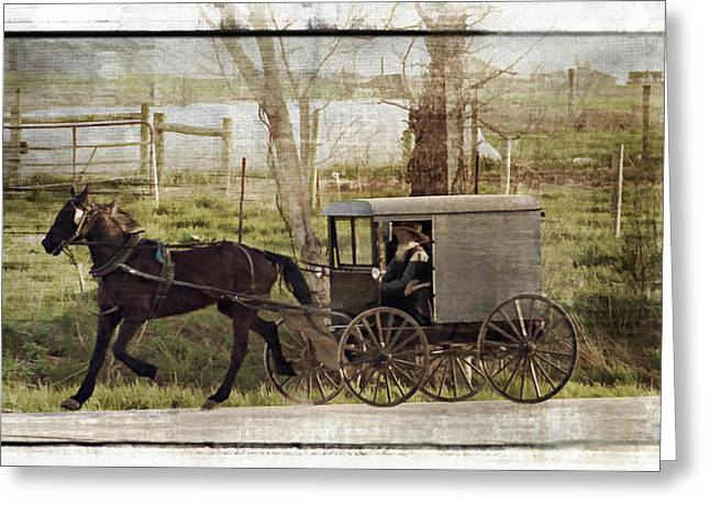 Amish Greeting Cards - Out For A Ride Greeting Card by Kathy Jennings