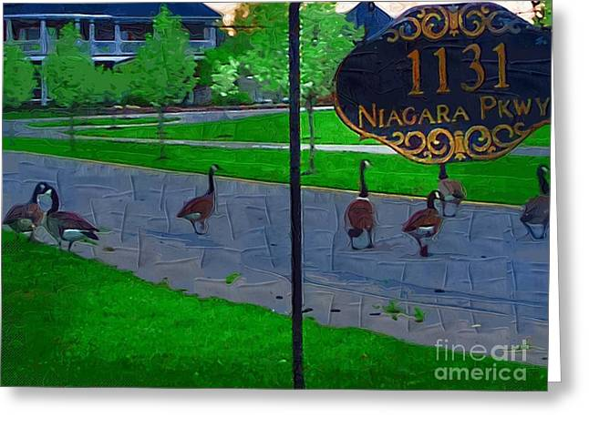 Canadian Geese Greeting Cards - Out For A Stroll Greeting Card by Deborah MacQuarrie