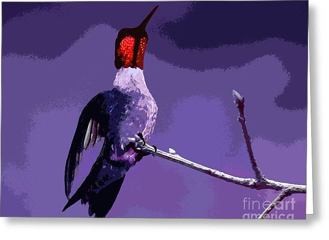 Camo Greeting Cards - Out on a Limb - Purple Greeting Card by Al Powell Photography USA