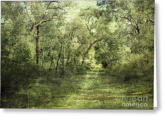 Olive Green Photographs Greeting Cards - Outback Bush Greeting Card by Linde Townsend