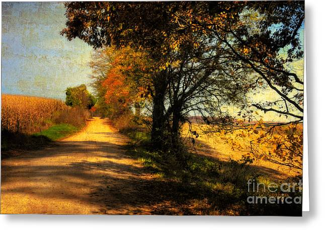 Country Lanes Digital Art Greeting Cards - Over My Shoulder Greeting Card by Lois Bryan