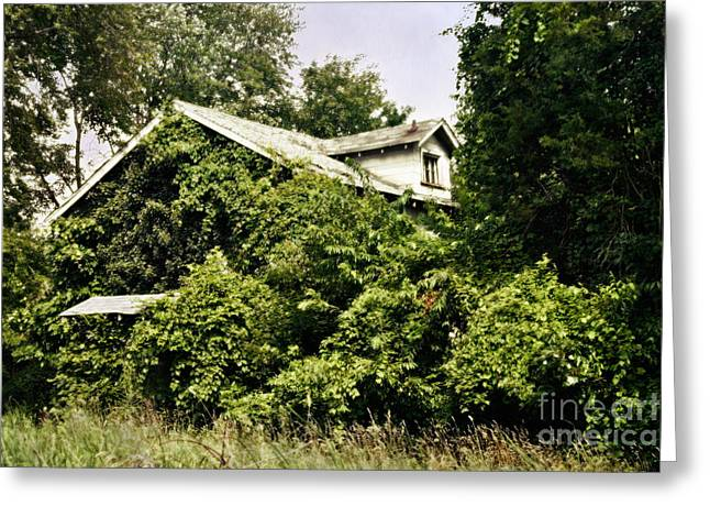 Unoccupied Greeting Cards - Overgrown House Five Greeting Card by Susan Isakson