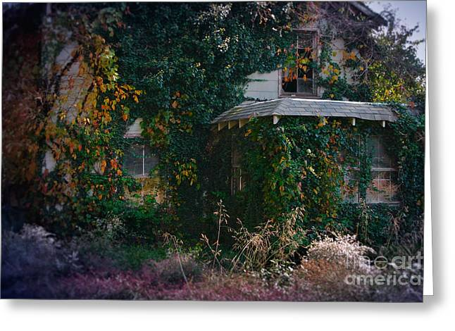 Recently Sold -  - Engulfing Greeting Cards - Overgrown House Six Greeting Card by Susan Isakson