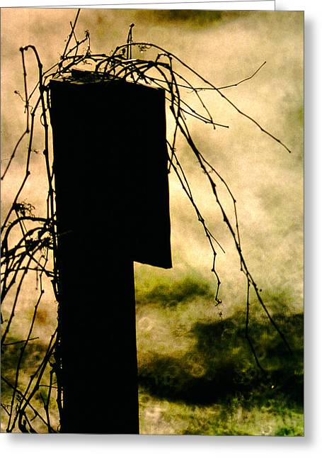 Outmoded Photographs Greeting Cards - Overgrown Rules Greeting Card by Mike Flynn
