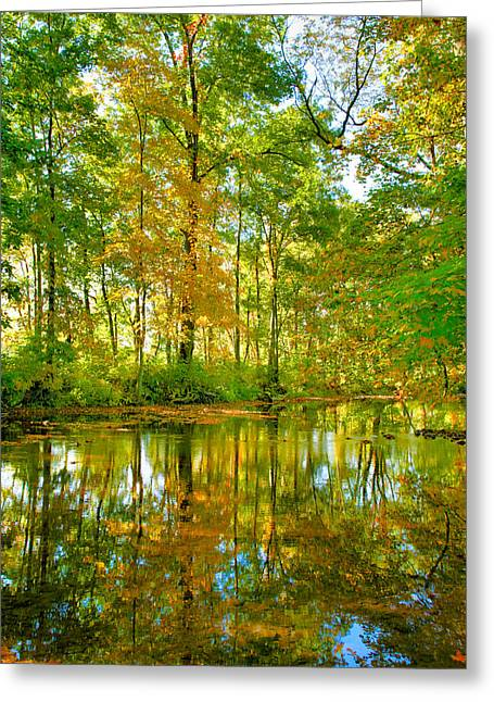 Seasonal Prints Rural Prints Greeting Cards - Owens Creek in Autumn I Greeting Card by Steven Ainsworth