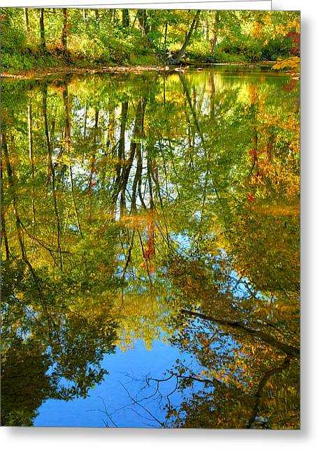 Creek Framed Prints Greeting Cards - Owens Creek in Autumn II Greeting Card by Steven Ainsworth