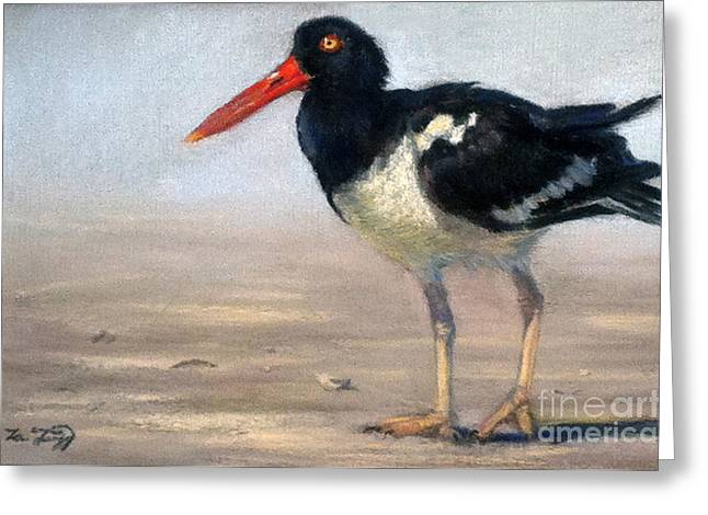 Wadding Greeting Cards - Oyster Catcher Greeting Card by Deb LaFogg-Docherty