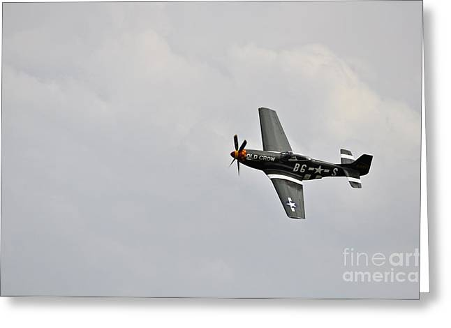 Power Pyrography Greeting Cards - P51D Mustang Greeting Card by Conny Sjostrom