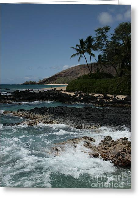 Honuaula Greeting Cards - Paako Beach Makena Maui Hawaii Greeting Card by Sharon Mau