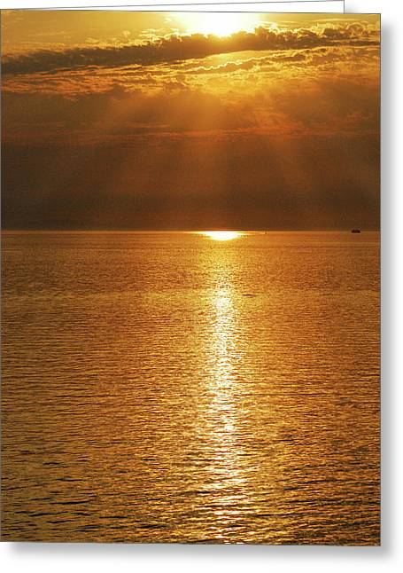 North Vancouver Greeting Cards - Pacfic Gold 8030 Greeting Card by Michael Peychich