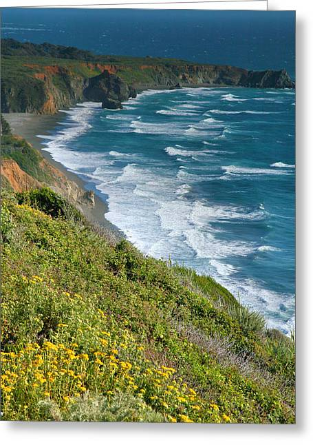 Pacific Ocean Prints Greeting Cards - Pacific Coast Shoreline I Greeting Card by Steven Ainsworth