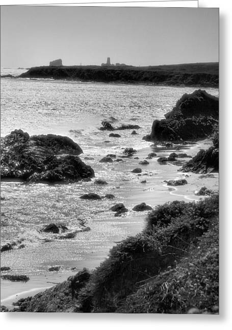Piedras Blancas Lighthouse Greeting Cards - Pacific Coast Shoreline II Greeting Card by Steven Ainsworth