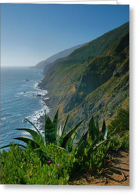 Pacific Ocean Prints Greeting Cards - Pacific Coast Shoreline III Greeting Card by Steven Ainsworth