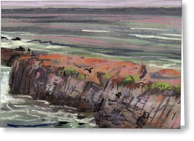 Pescadero Greeting Cards - Pacific Coastal Panorama Greeting Card by Donald Maier
