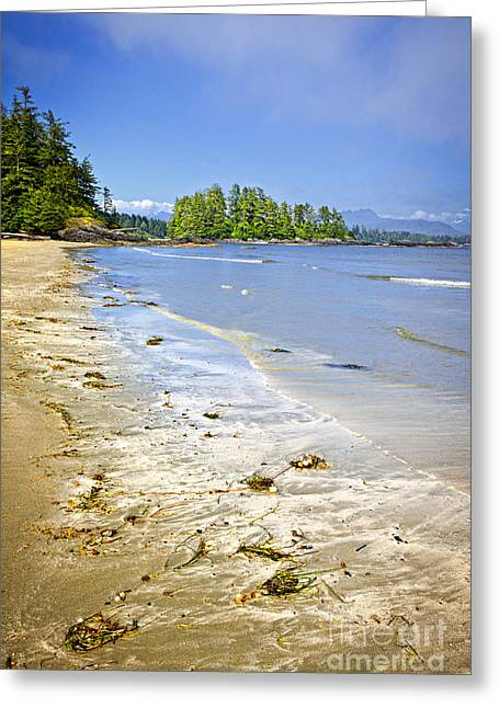 Vancouver Island Greeting Cards - Pacific ocean coast on Vancouver Island Greeting Card by Elena Elisseeva