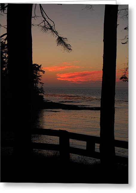 Randall Templeton Greeting Cards - Pacific sunset.. Wa. Greeting Card by Randall Templeton