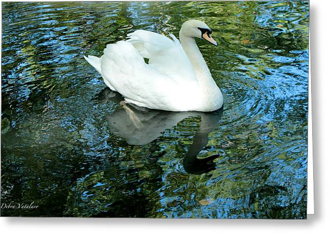Reflection In Water Mixed Media Greeting Cards - Paddle Greeting Card by Debra     Vatalaro