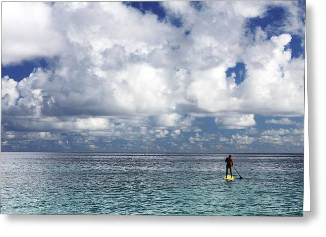 Surfing Art Greeting Cards - Paddling in the Open Greeting Card by Vince Cavataio - Printscapes
