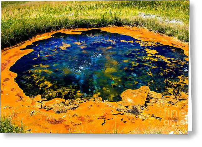 Paint Photograph Greeting Cards - Paint Pot II Greeting Card by Robert Bales