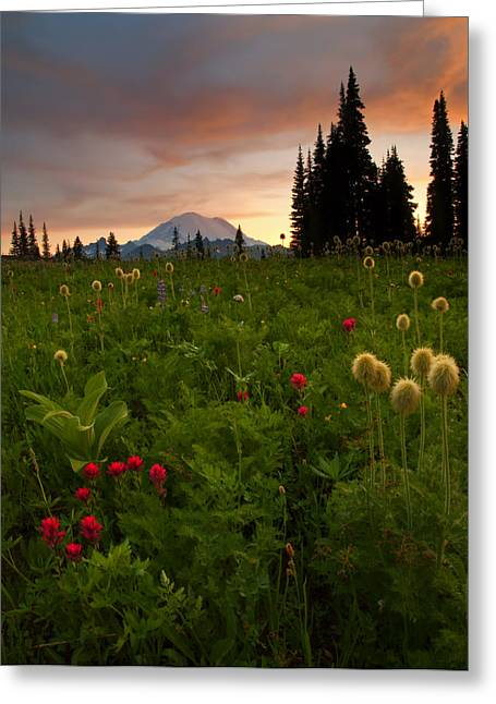 Mt Greeting Cards - Paintbrush Sunset Greeting Card by Mike  Dawson