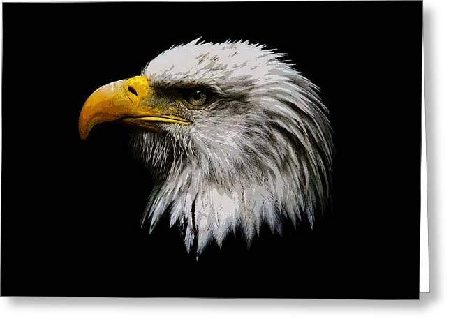 Abstract Rain Greeting Cards - Painted Bald Eagle Head Greeting Card by Steve McKinzie
