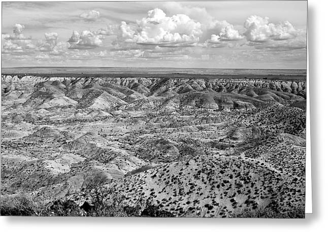Petrified Forest Greeting Cards - Painted Desert in B and W Greeting Card by Melany Sarafis