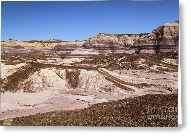 Petrified Forest National Park Greeting Cards - Painted Desert Landscape Greeting Card by Adam Jewell