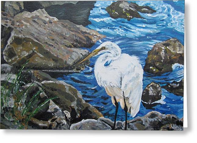 Painting  Sharon's Heron On The Rocks Greeting Card by Judy Via-Wolff