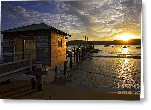 Palm Beach Greeting Cards - Palm Beach sunset Greeting Card by Sheila Smart