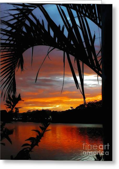 Palm Framed Sunset Greeting Card by Kaye Menner