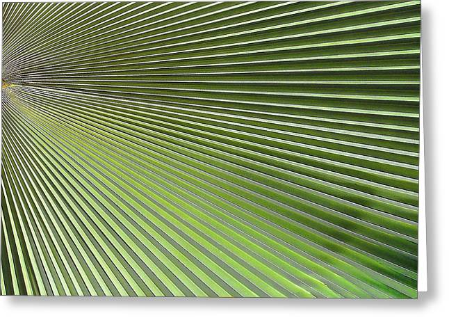 Geometric Effect Greeting Cards - Palm Leaf-2 Greeting Card by Rudy Umans