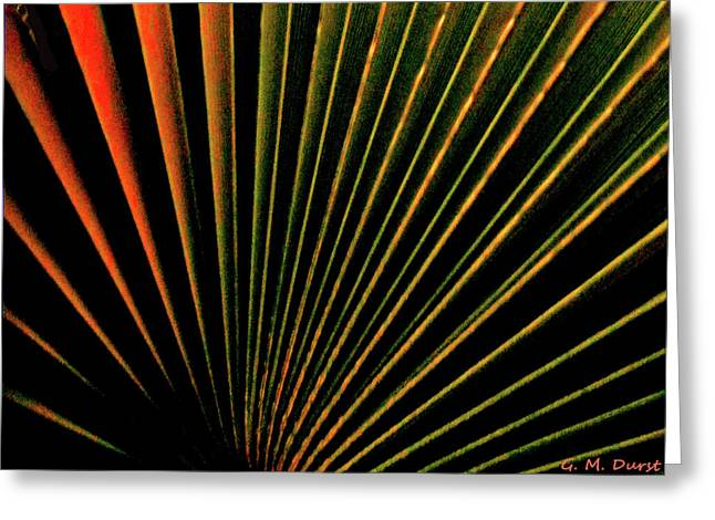 Sunset Abstract Greeting Cards - Palm Lines Greeting Card by Michael Durst
