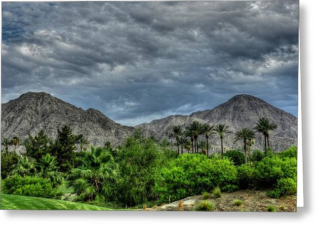 Lush Green Greeting Cards - Palm Springs HDR 013 Greeting Card by Lance Vaughn