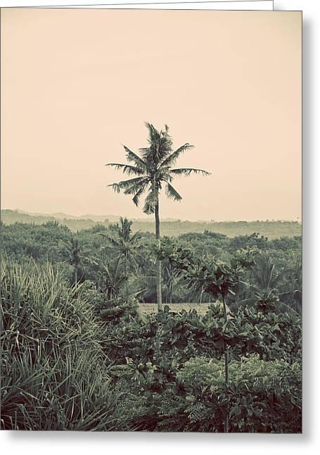 Darren Greeting Cards - Palm tree Greeting Card by Darren Martin