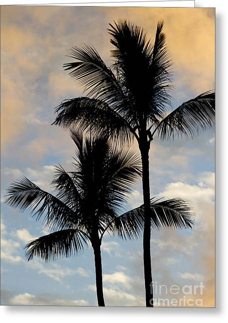 Coconut Palm Tree Greeting Cards - Palm Tree Sunset Hawaii Greeting Card by Dustin K Ryan