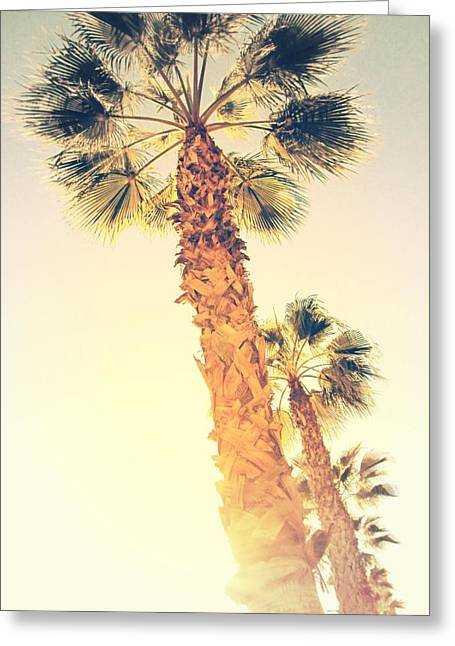Winter Photos Greeting Cards - Palm Trees in Alicante - Spain Greeting Card by Marianna Mills
