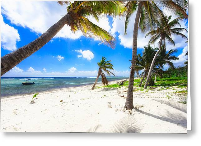 Tropical Beach Greeting Cards - Palm Trees on Breakers Beach Greeting Card by George Oze