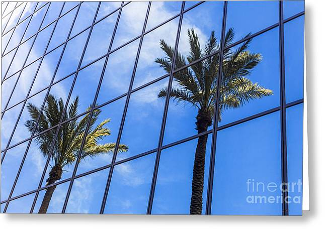 Glass Reflecting Greeting Cards - Palm Trees Reflection on Glass Office Building Greeting Card by Paul Velgos
