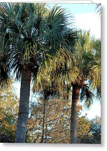 Palmetto Trees Greeting Cards - Palmetto Pairing Greeting Card by Suzanne Gaff