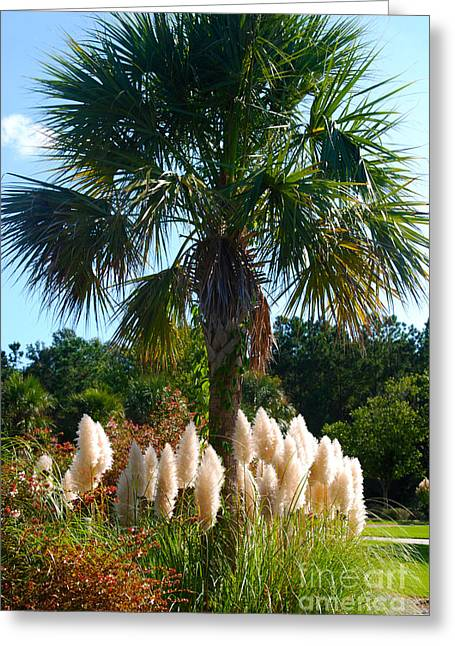 Palmetto Trees Greeting Cards - Palmetto Tree  Greeting Card by Susanne Van Hulst