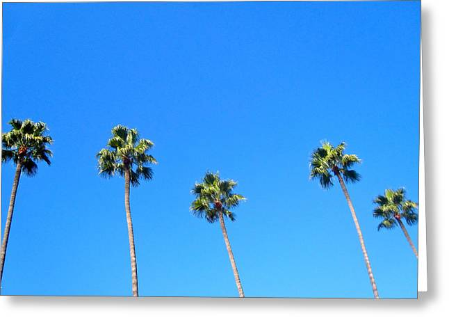 Palms Greeting Card by Jon Berry OsoPorto