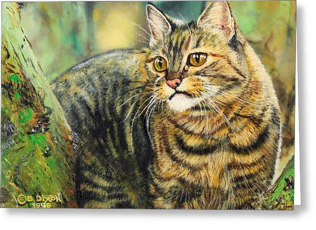 Palo Verde Kitty Greeting Card by Baron Dixon