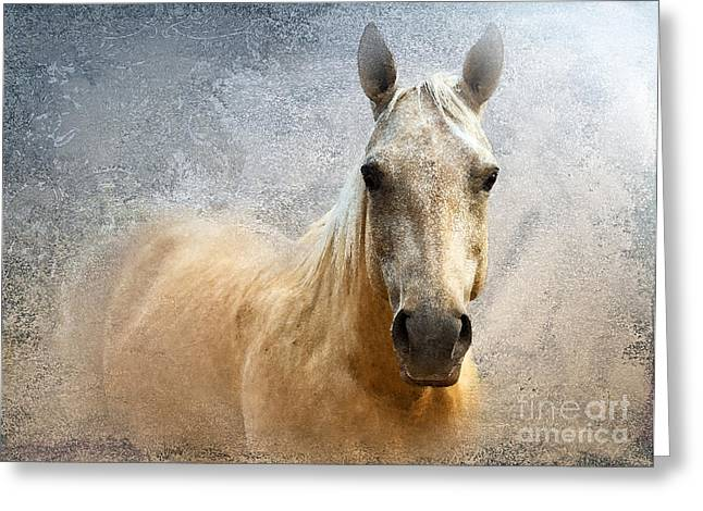 Quarter Horse Digital Art Greeting Cards - Palomino Greeting Card by Betty LaRue
