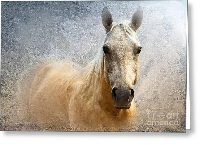 Quarter Horse Digital Greeting Cards - Palomino Greeting Card by Betty LaRue